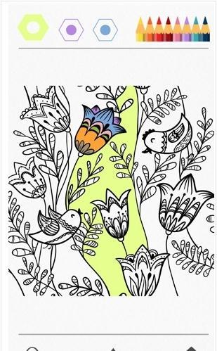 Colorfy秘密花园怎么玩?Colorfy涂色怎么用?[多图]