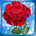 雨滴相机app手机版下载 v1.7