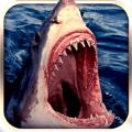 愤怒的鲨鱼进化2016
