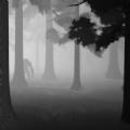 雾霾狂奔游戏IOS版 v1.1