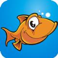 我的钓鱼app手机版下载 v1.0.2