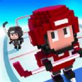 方块冰球中文内购破解版(Blocky Hockey) v1.1.204
