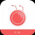 花蚁电商app下载官方手机版 v1.1.0