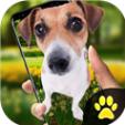 idog狗在屏幕上软件下载app官方手机版 v1.2