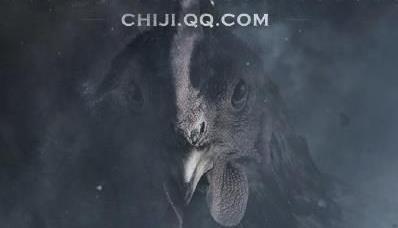 QQ吃鸡手游资格怎么得? 腾讯吃鸡手游内测资格获取攻略[图]