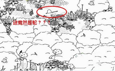 隐藏的人鸡在哪? 森林第10关图文通关教程[图]