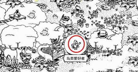 隐藏的人鸟类爱好者在哪? 森林第12关图文通关教程[图]