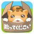 拯救被遗弃的小猫无限金币修改破解版 v1.0
