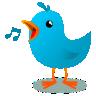 鸟类的铃声app软件下载手机版 v1.01