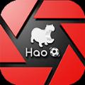 Hao球数据app官方版手机软件免费下载 v4.2.1