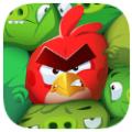 愤怒的小鸟神秘岛九游版国服下载 v1.0