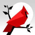 动物拼图游戏安卓版下载(Cardinal Land) v1.3.1