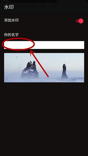 vue视频怎么显示自己的署名?vue设置署名方法介绍[多图]