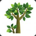 树报知道官网app手机版下载 v1.01