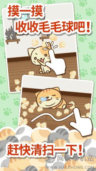 猫咪的毛官方下载 猫咪的毛官方下载唯一指定地址[图]
