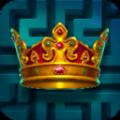 迷宫领主游戏中文汉化版(Maze Lord) v1.0