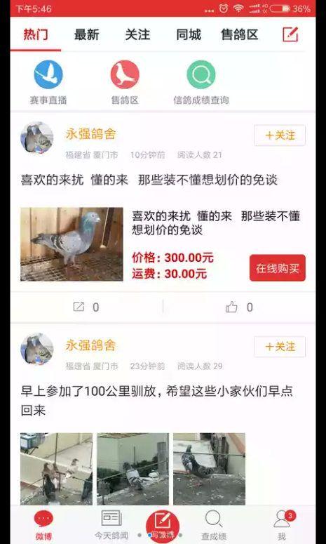 搜鸽天下一查信鸽成绩2018最新版app下载图片1