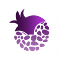 紫石榴应用商店官网版