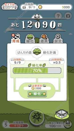 熊猫森林攻略大全 新手入门技巧攻略[多图]