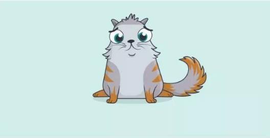 区块猫是什么 区块猫有什么用[多图]