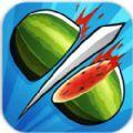 水果忍者战斗游戏安卓版 v1.0.0