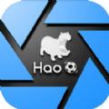 Hao球助手ios官方版�件下�d v2.2