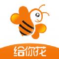 给你花官方客户端下载安装app v3.4.0
